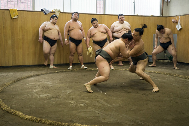 Sumo Morning Practice