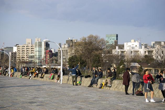 Yoyogi Park Tokyo