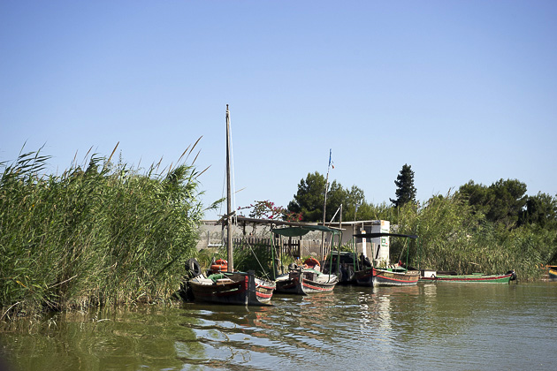 El Palmar And Albufera