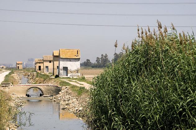 Rice Fields Bike Tour Valencia