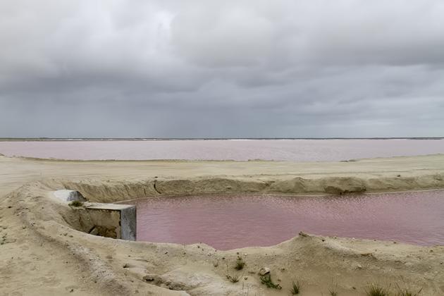 Las Coloradas Salt Flat