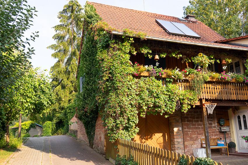 50 Bad Koenig Odenwald DSC03224