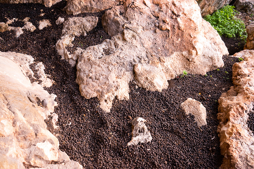 08 Lera Cave Stavros DSC06634