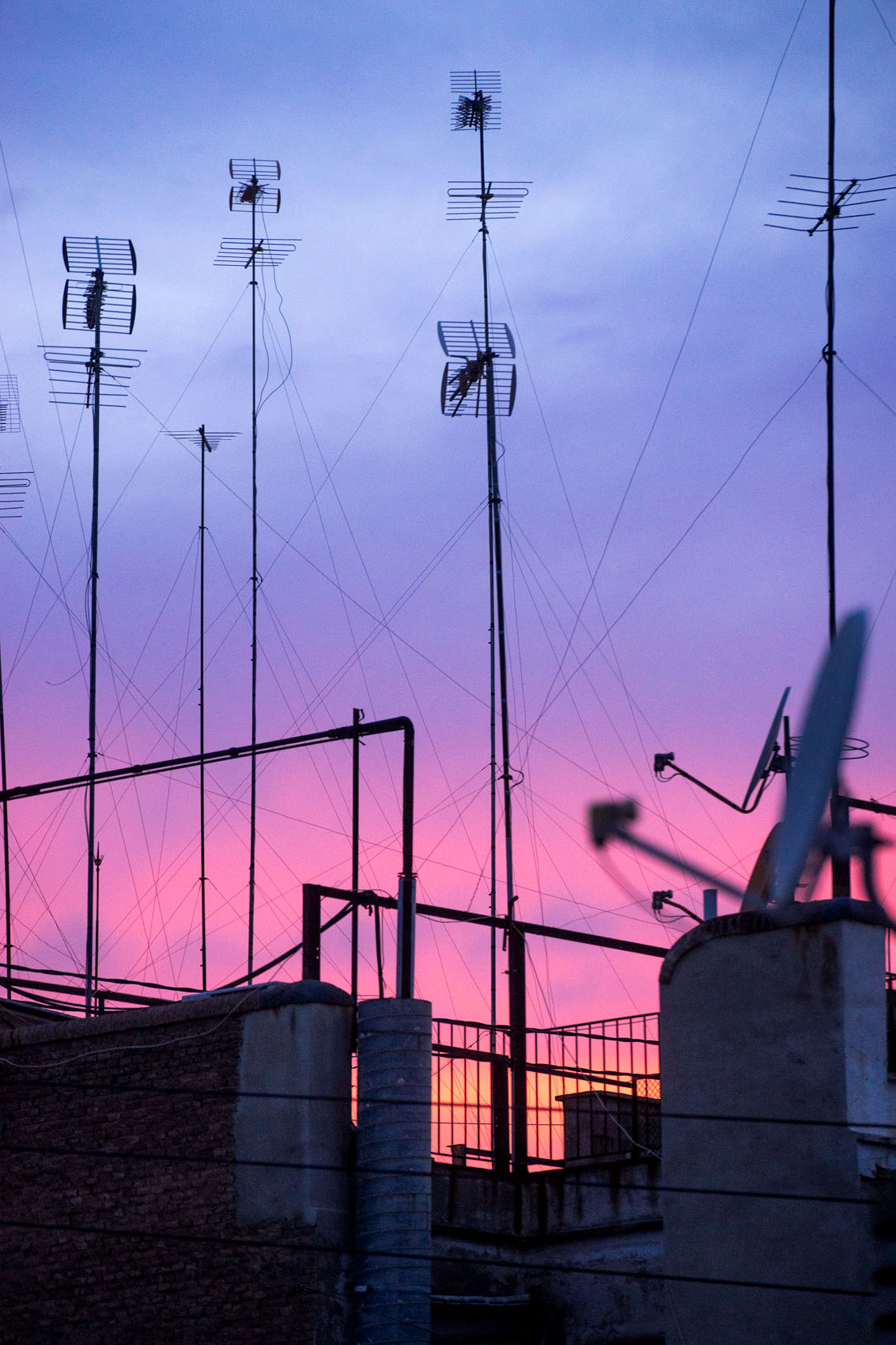 Pink Antenna