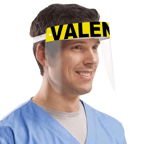 Valencia Protective Visor