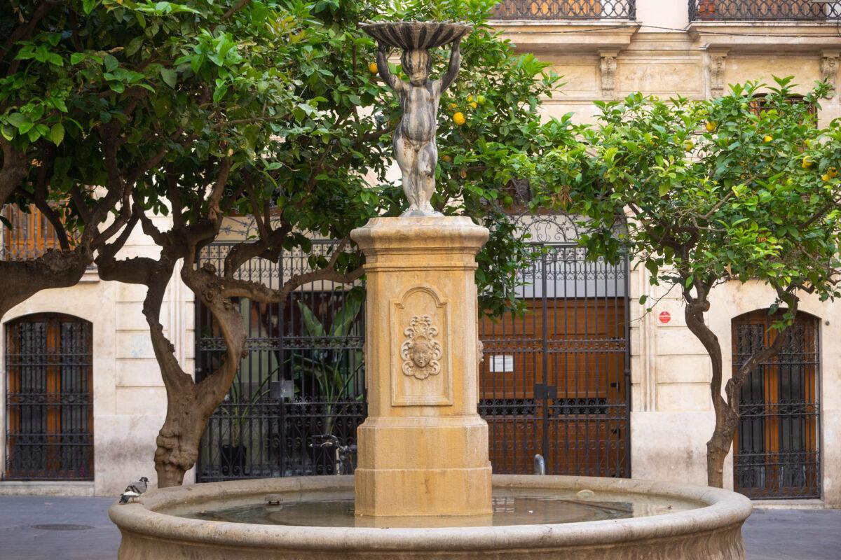 Valencia Covid19 Photos 15 DSC05329