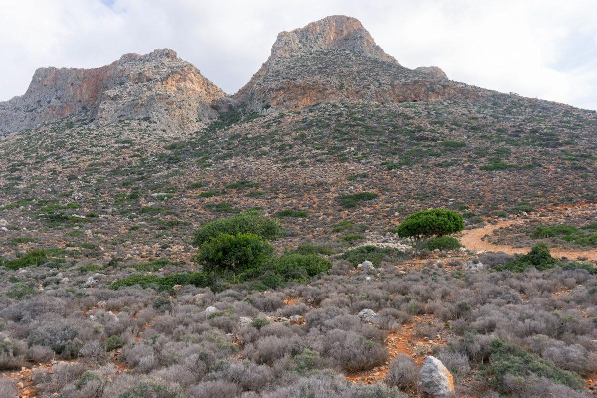 Stavros Hike Crete DSC07528 3