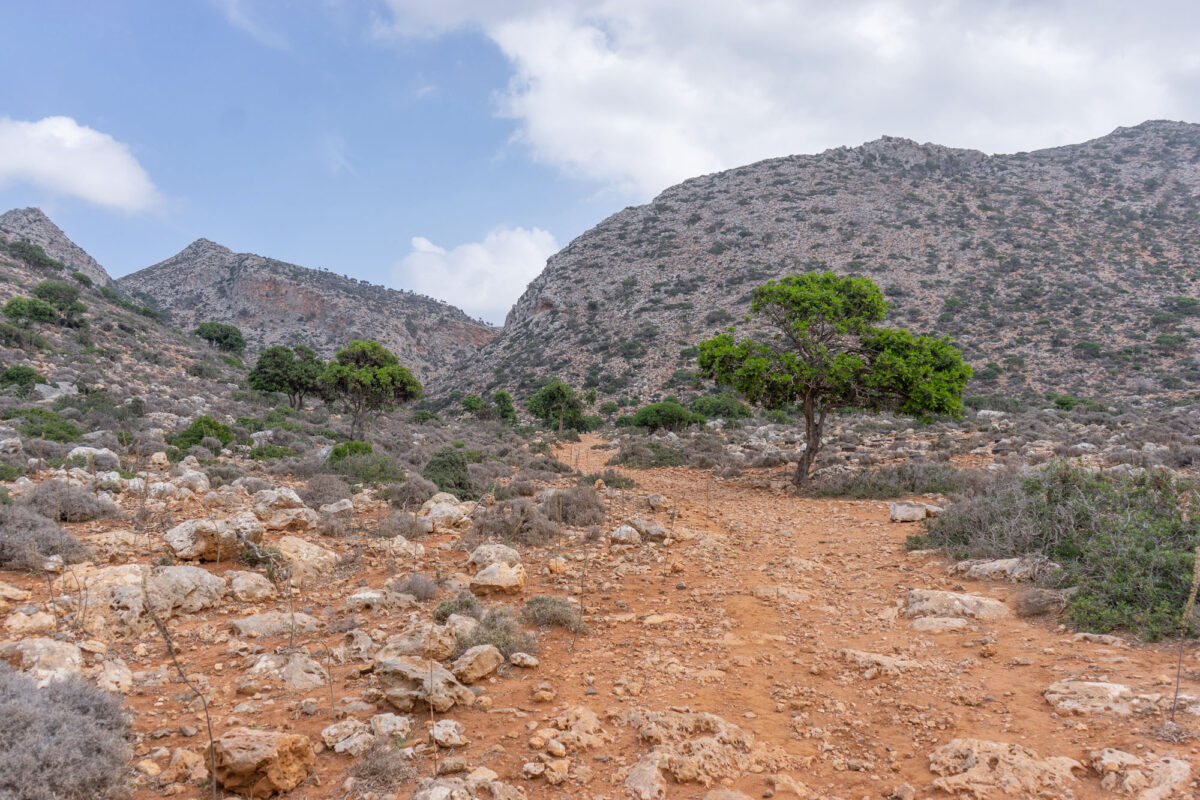 Stavros Hike Crete DSC07537 6
