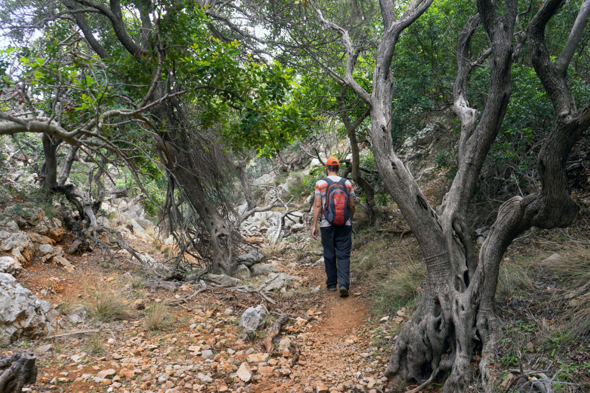 Stavros Hike Crete DSC07566 13
