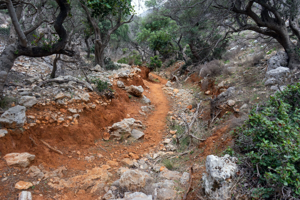 Stavros Hike Crete DSC07571 14