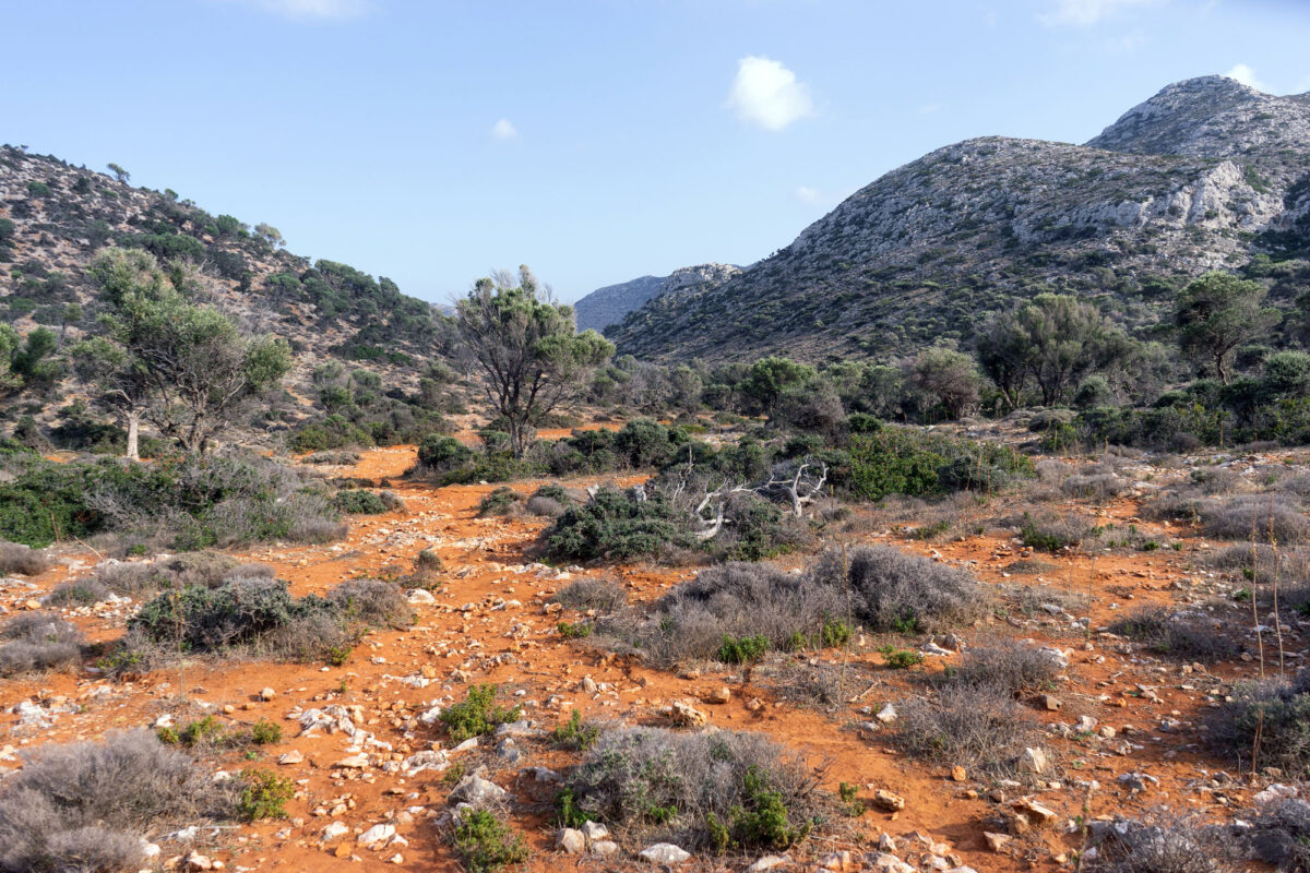 Stavros Hike Crete DSC07711 54
