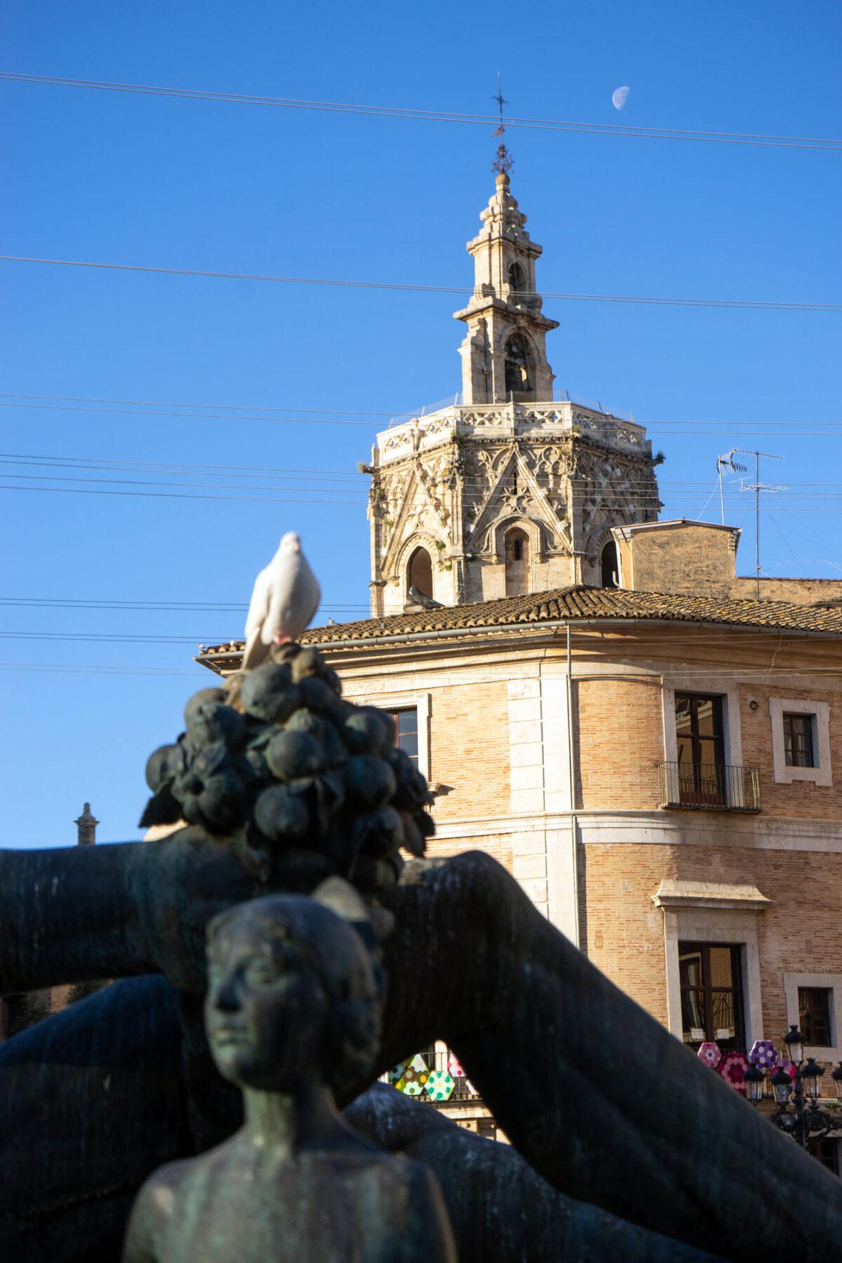 43 Covid19 Valencia Post Lockdown DSC06434